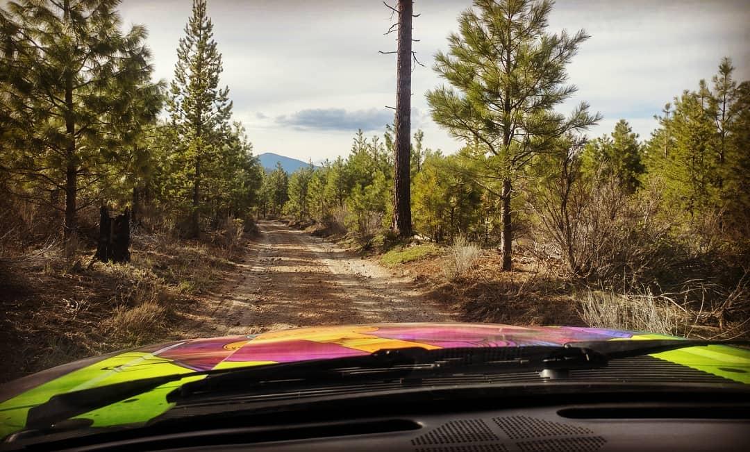Name:  worked road.jpg Views: 105 Size:  122.5 KB