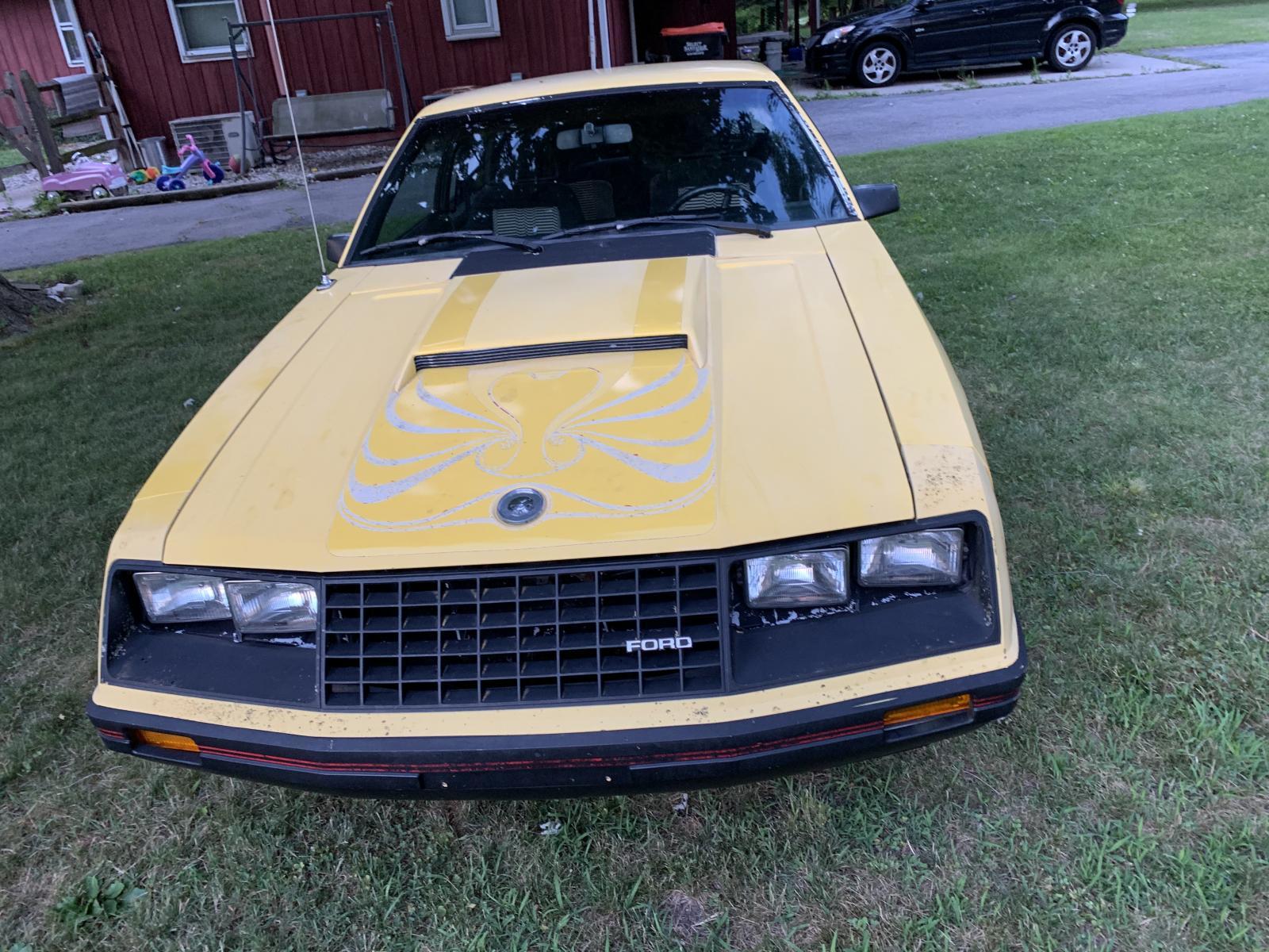 Name:  Mustang front.jpg Views: 1040 Size:  311.1 KB
