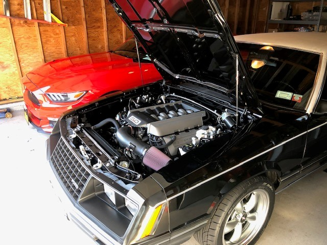Name:  Mustang 5.jpg Views: 201 Size:  107.6 KB